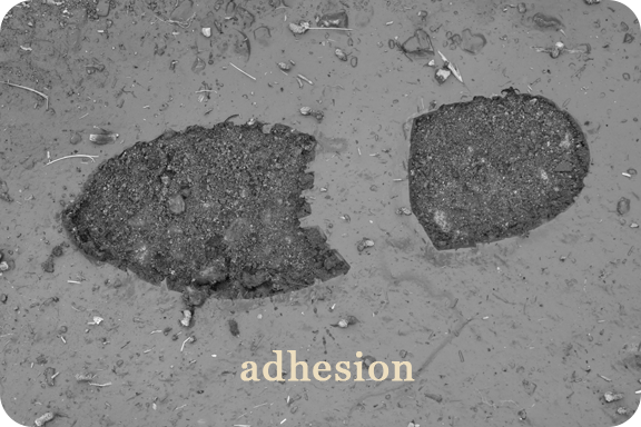 adhesion, in tracking